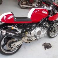 Yamaha TRX 850 96-99