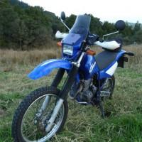 Yamaha TTR 250 00-02