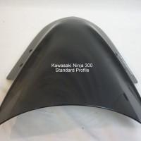 Kawasaki Ninja 300 12-